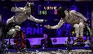 Scherma paralimpica, l'Italia trionfa agli Europei di Terni
