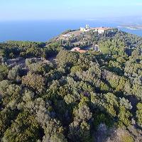 Populonia, tutto il fascino dell'acropoli: così dall'alto
