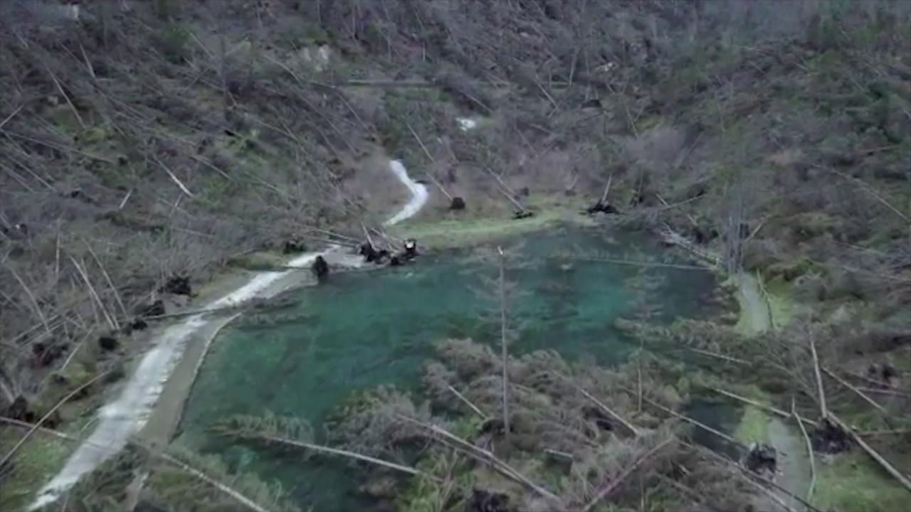 Maltempo belluno spunta il lago tra gli alberi divelti for Lago padova