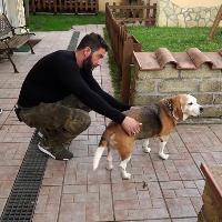 """Ostia, benzina a casa del giornalista che indagò su Juve e 'ndrangheta: """"Mi ha salvato il cane"""""""