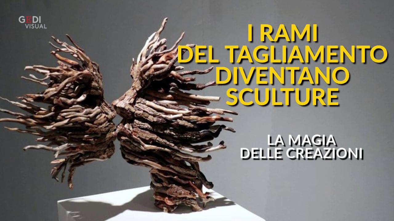 Alessandra Aita i legni del tagliamento diventano sculture: la magia dell