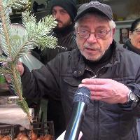 Furto albero di Natale in Galleria a Napoli, la rabbia dei negozianti dei Quartieri