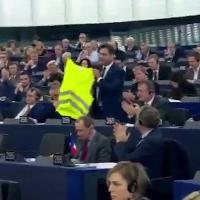"Strasburgo, leghista sventola gilet giallo nel Parlamento Ue: ""Europa spalleggia islamisti, svegliatevi"""