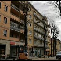Il taglio dei primi venti tigli nel viale Montegrappa di Prato