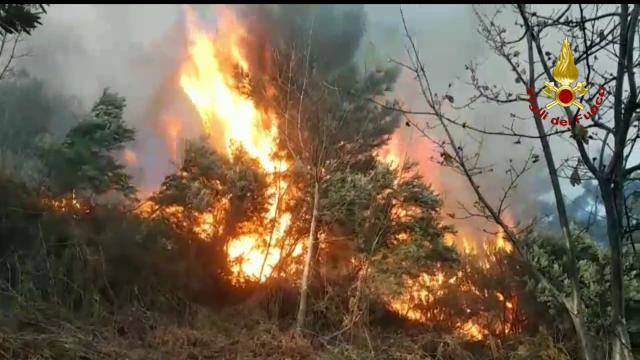 Genova, canadair e diverse squadre a terra per domare l'incendio sopra Voltri