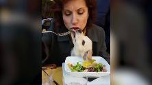 Alda D'Eusanio mangia e il cane le lecca la bocca: tra disgusto e amore, il video che divide