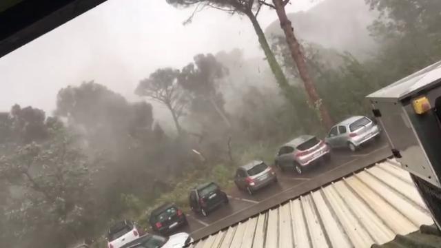 """Maltempo a Milano Marittina: """"Ragazzi, cadono gli alberi"""""""