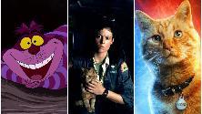 Giorno internazionale del gatto: dallo Stregatto a Goose, i felini più iconici del cinema