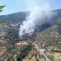 Due Canadair e tre elicotteri del Corpo Forestale impegnati in un incendio nell'agro di Bono