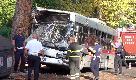 Roma, autobus contro un albero: il mezzo distrutto