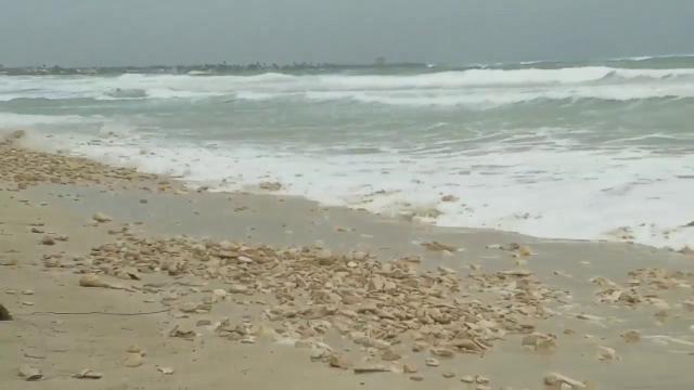 Maltempo, in Salento la mareggiata cancella la spiaggia di Torre Lapillo