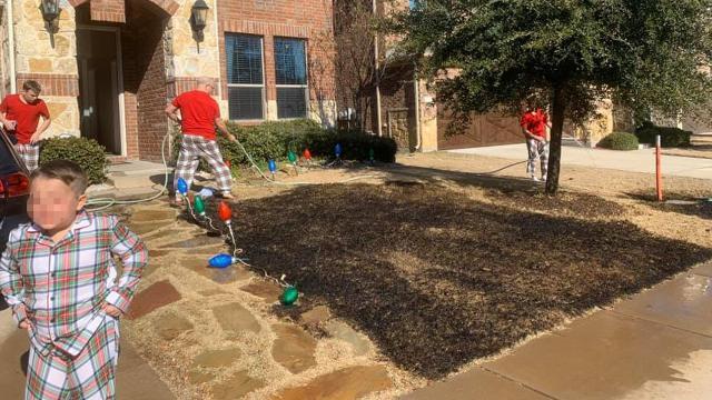 Dodicenne riceve una lente d'ingrandimento per Natale e devasta il giardino