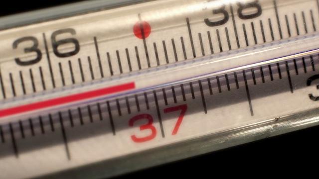 Il Termometro Segna 37 Gradi Occhio Avete La Febbre Una Ricerca Ha Cambiato Tutto Business Insider Italia Non inquina, non si rompe e il display viene letto con grande facilità. il termometro segna 37 gradi occhio