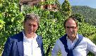 Con i fratelli Roberto e Carlo Paladin nei vigneti di Castello Bonomi