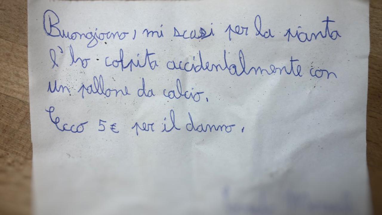 Rovina una pianta, lascia 5 euro e un biglietto di scuse: il gesto esemplare del bambino