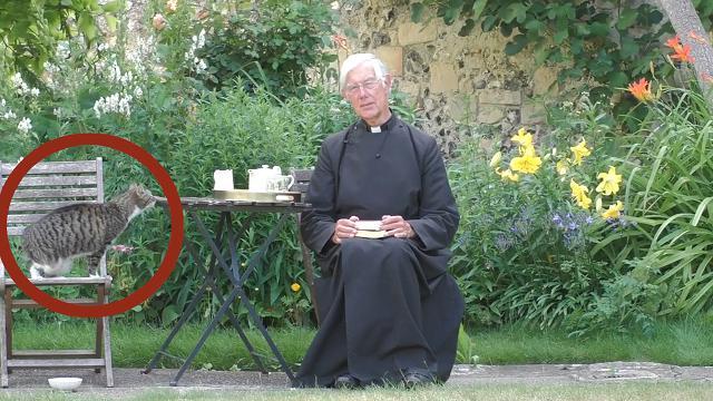 Canterbury: alla video-preghiera mattutina dalla cattedrale arriva il gatto. E fa colazione