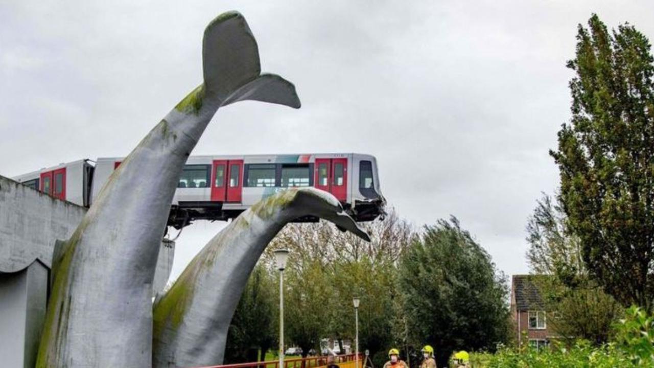 La scultura di una balena salva il treno della metro dal disastro dopo essere deragliato impedendo che precipiti nel vuoto
