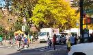 Biden presidente, New York festeggia: clacson e caroselli in strada