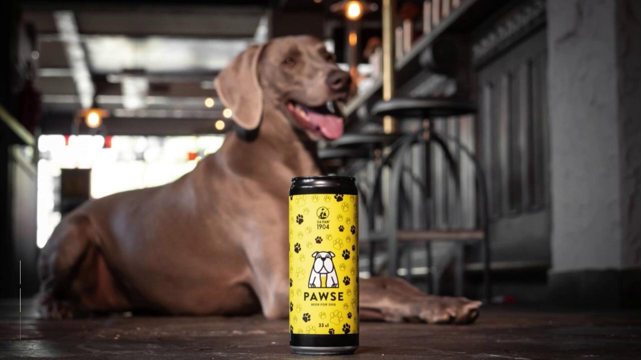 Treviso: ecco Pawse, la prima birra per cani italiana