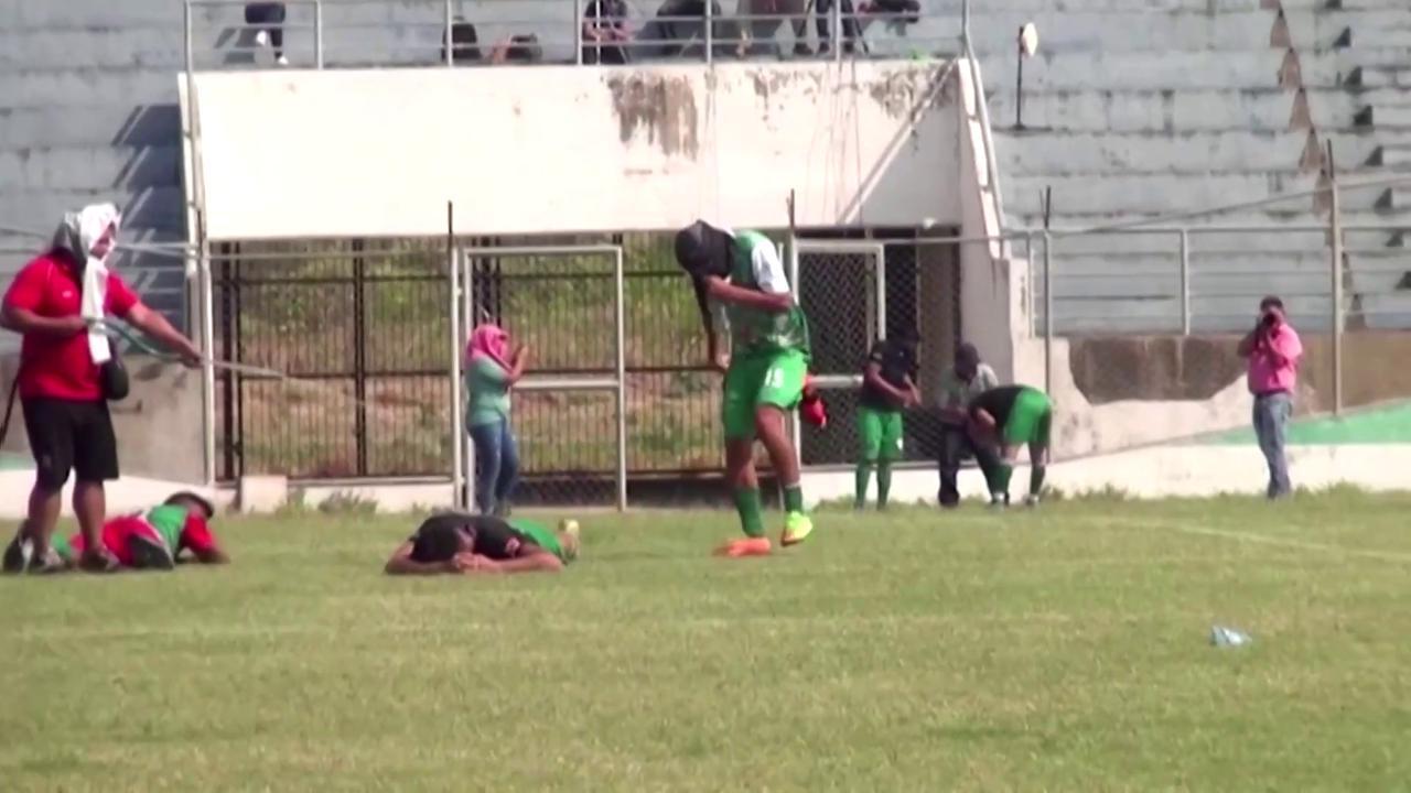 Bolivia, panico tra i calciatori: uno sciame di api invade il campo durante la partita